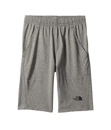 The North Face Kids Reactor Core Shorts (little Kids/big Kids) (tnf Medium Grey Heather) Boy's Shorts