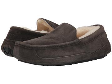 Ugg Ascot (charcoal) Men's Slippers