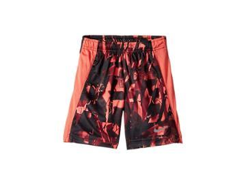Nike Kids Dri-fit All Over Print Legacy Shorts (little Kids) (bright Crimson) Boy's Shorts
