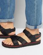 Timberland Pierce Point Sandals - Black