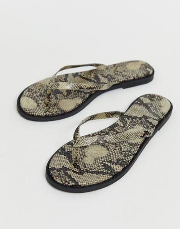 Asos Design Fantom Flip Flops In Snake Print-beige