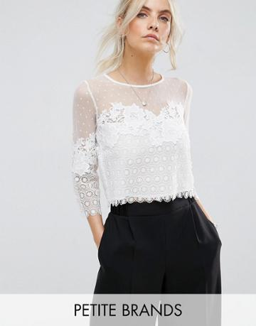New Look Petite Dobby Mesh Lace Top - Cream