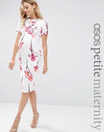 Asos Maternity Petite Scuba Pencil Dress In Red Floral - Multi