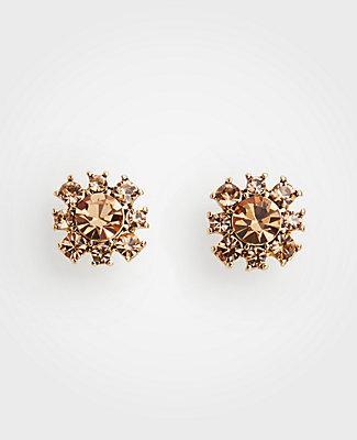 Ann Taylor Floral Statement Stud Earrings