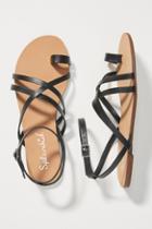 Splendid Sully Sandals