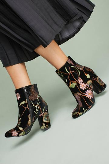 Steven By Steve Madden Steven By Steve Madden Lissa Boots