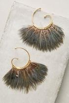 Gas Bijoux Dusk Songbird Hoops