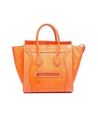 Celine Pre-owned Celine Python Mini Luggage Tote Bag
