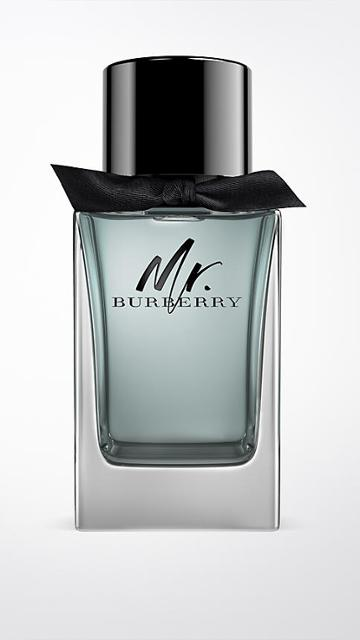 Burberry Mr. Burberry Eau De Toilette 1000ml
