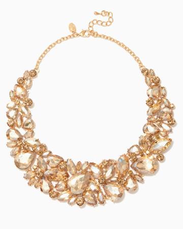 Charming Charlie Naturi Cluster Bib Necklace