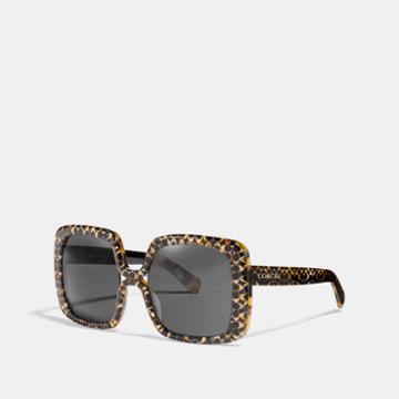 Coach Ombre Signature Square Sunglasses