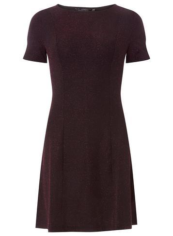 Dorothy Perkins Burgundy Glitter Fit And Flare Dress