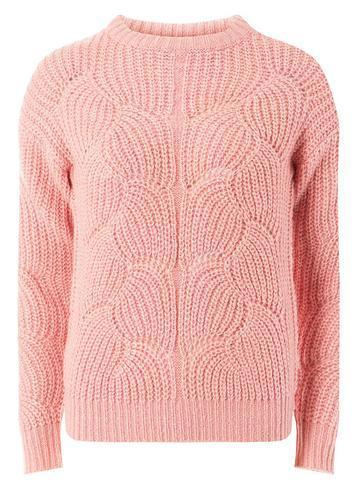 Dorothy Perkins Petite Pink Lofty Stitch Jumper