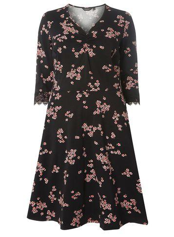 Dorothy Perkins Dp Curve Mulit Coloured Floral Lace Fit And Flare Dress