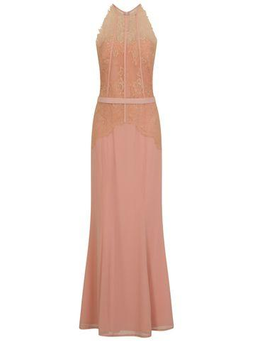 Dorothy Perkins *little Mistress Blush Lace Bodice Maxi Dress