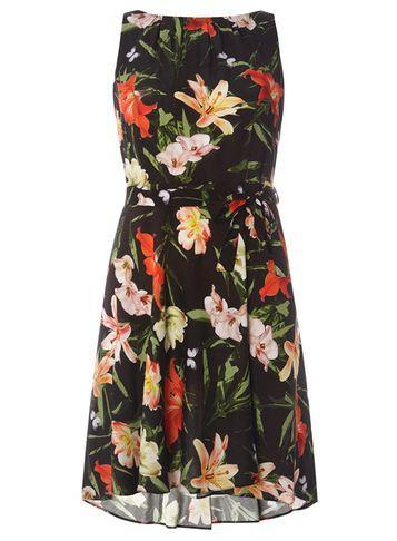Dorothy Perkins *billie & Blossom Petite Black Butterfly Print Skater Dress