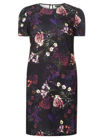Dorothy Perkins Purple Floral Print Shift Dress