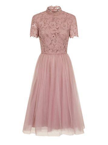 Dorothy Perkins *chi Chi London Mink Lace High Neck Skater Dress