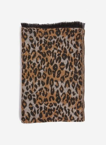 Dorothy Perkins Brown All Over Leopard Print Scarf