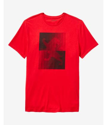 Express Boxed Lion Crew Neck Graphic Tee