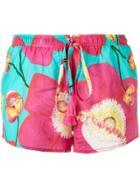 Isolda Floral Print Shorts - Blue
