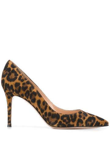 Gianvito Rossi Gianvito Pumps - Brown