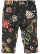Dolce & Gabbana Floral Peacock Print Shorts - Multicolour