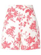 Semicouture Floral-print Shorts - Neutrals