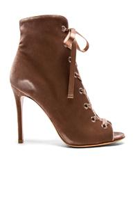 Gianvito Rossi For Fwrd Velvet Lace Up Booties In Pink
