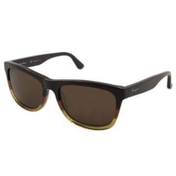 Ferragamo Sunglasses - Sf775s