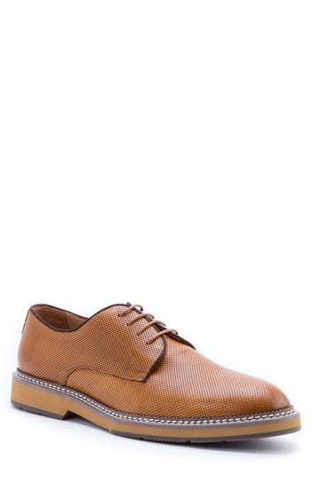 Men's Zanzara Monticello Perforated Plain Toe Derby M - Brown