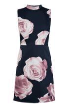 Oasis Rose Print Shift Dress