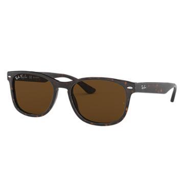 Ray-ban Tortoise Sunglasses, Polarized Brown Lenses - Rb2184