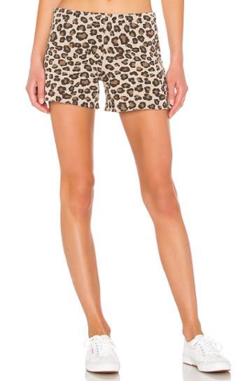 Leopard Elastic Waist Shorts