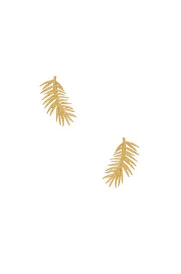 Palm Ear Climbers