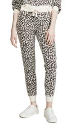 Z Supply The Multi Leopard Joggers