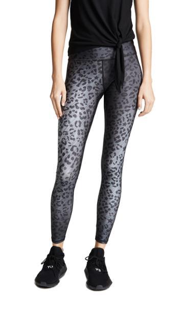 Terez Cheetah Tall Band Leggings