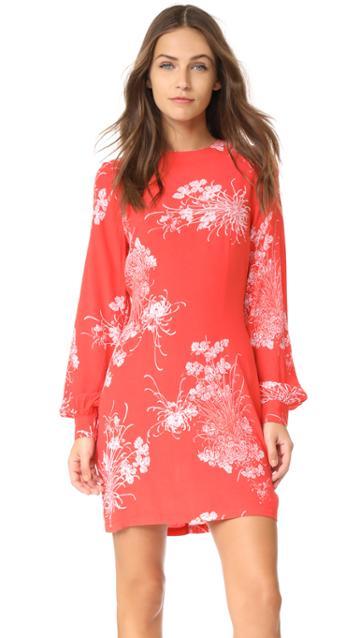 Rolla S Garden Dress