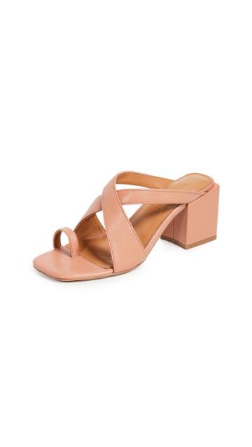 Jaggar Converge Toe Ring Sandals
