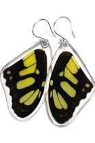 Malachite Butterfly Earrings