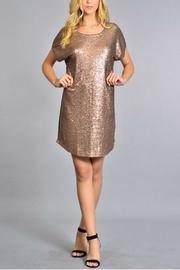 Sequin Shortsleeve Dress