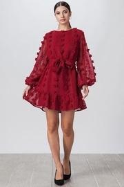 Stunning Burgundy Pompom Dress