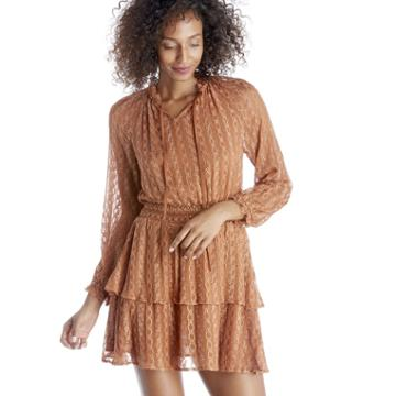 J.o.a. J.o.a. Embroidered Chiffon Layered Dress - Sienna