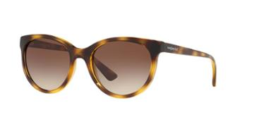 Sunglass Hut Collection Hu2011 53 Tortoise Butterfly Sunglasses
