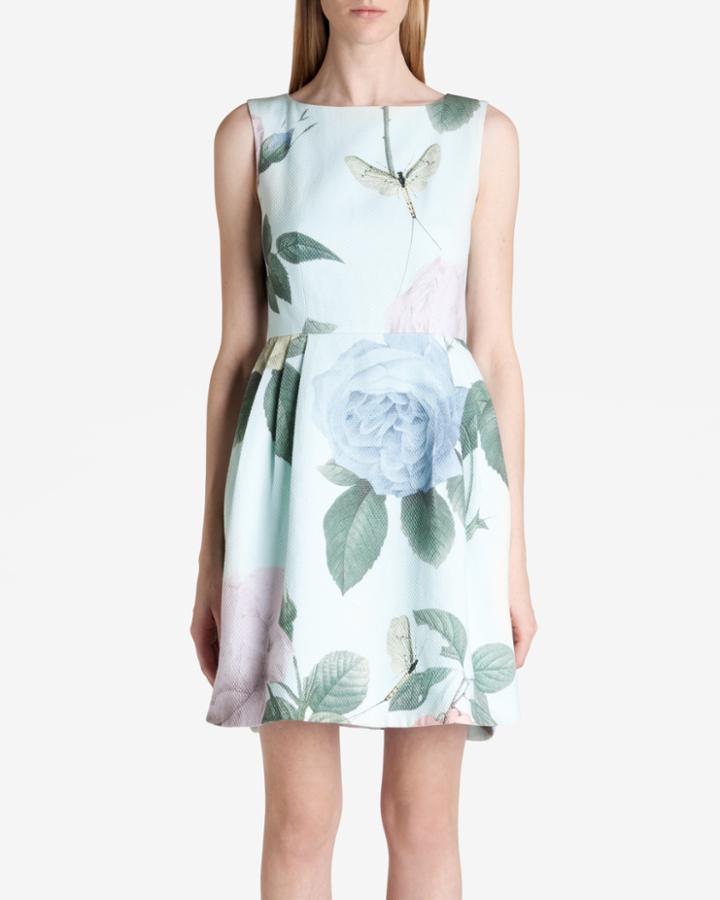 Ted Baker Distinguishing Rose Dress