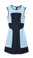 Embroidery Lace Paneled Dress
