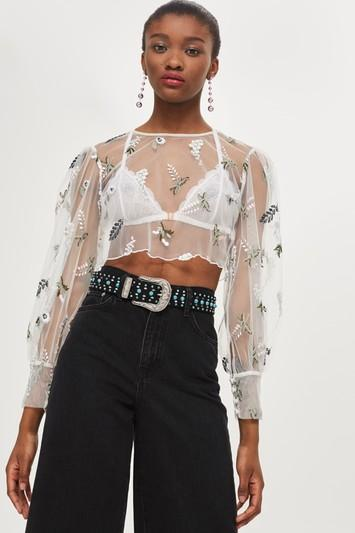 Topshop Botanical Embroidered Mesh Top