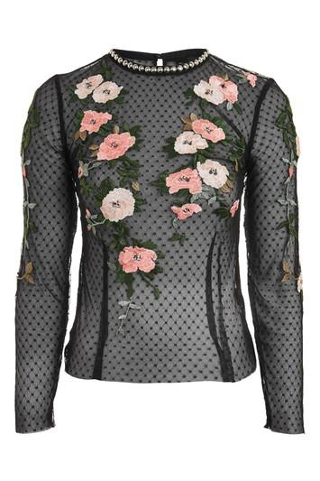 Topshop Embroidered Floral Mesh Top