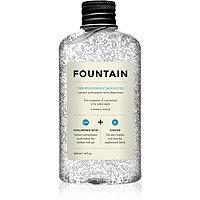 Fountain The Hyaluronic Molecule