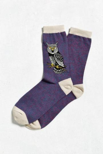 Urban Outfitters Owl Sock